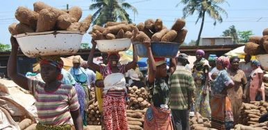village-women-carrying-stuff-on-heads